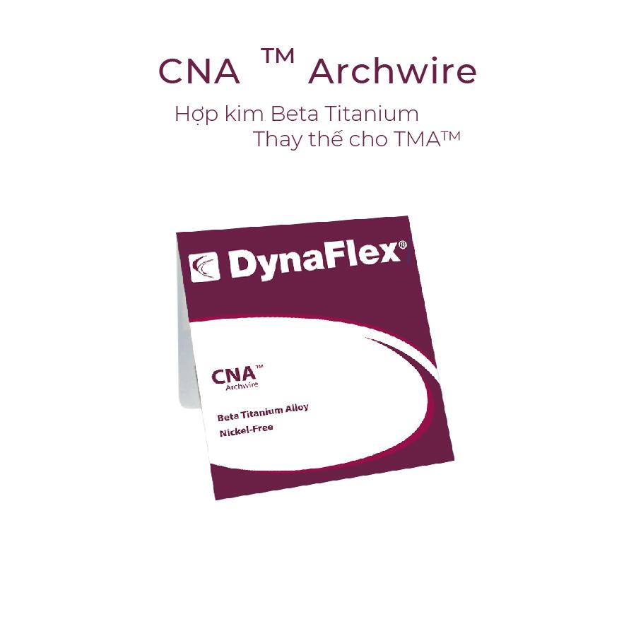 Dây cung Dynaflex 2