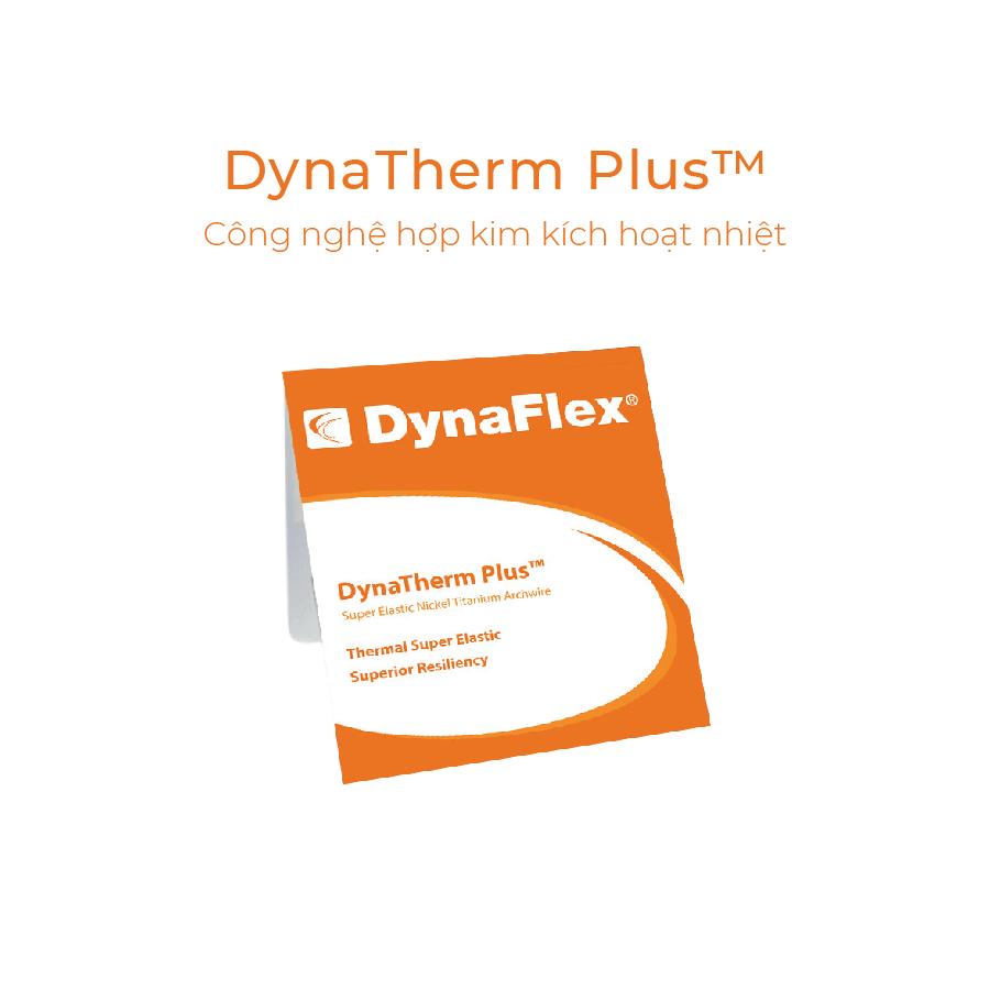 Dây cung Dynaflex 3